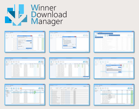 winner_download_manager