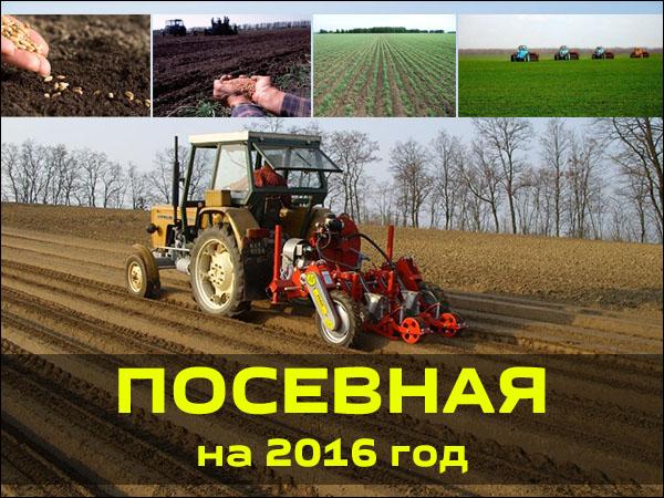 posevnoy-kalendar-2016