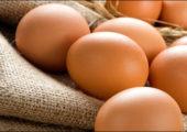 Чем полезны яйца при похудении?