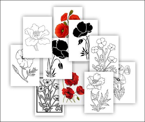 Шаблоны цветка мака: скачать, распечатать и вырезать