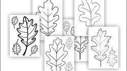 Дубовые листочки: скачать и распечатать шаблон