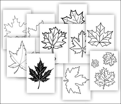 Кленовый лист: скачать и распечатать шаблон